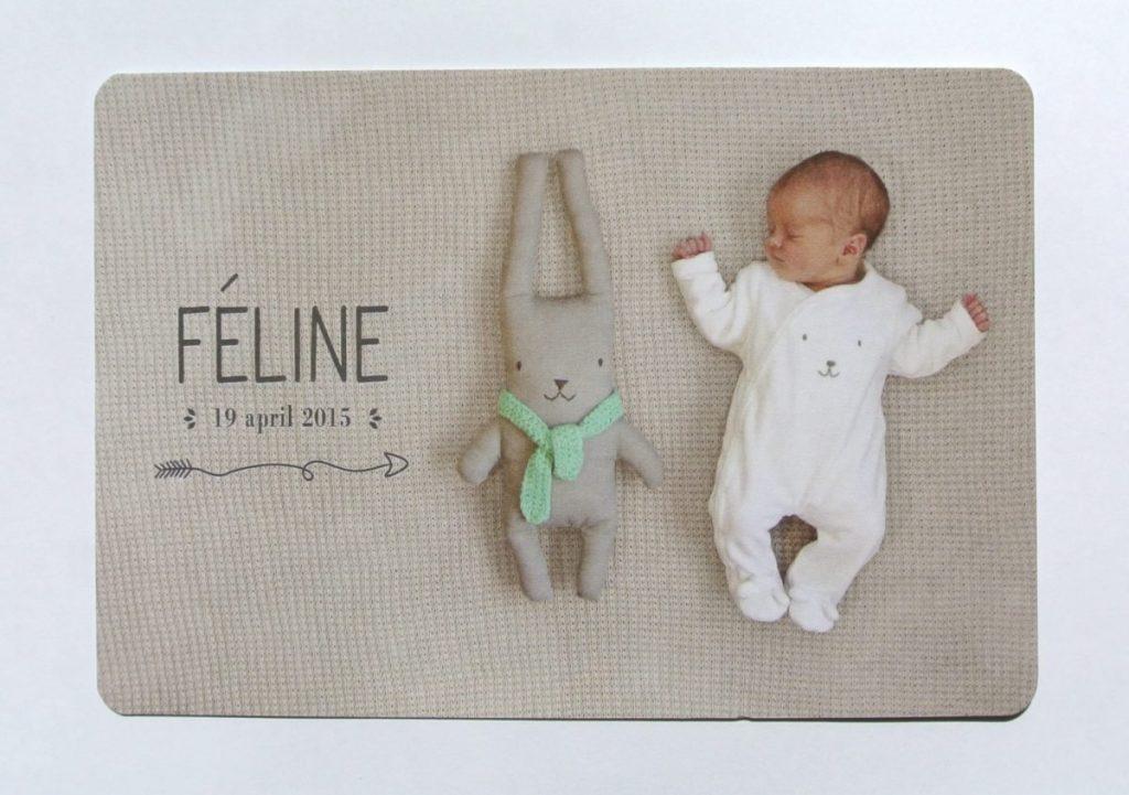Geboortekaartje Féline, met handmade knuffel van Erika van Amstalden | interesse? haskesommers@gmail.com